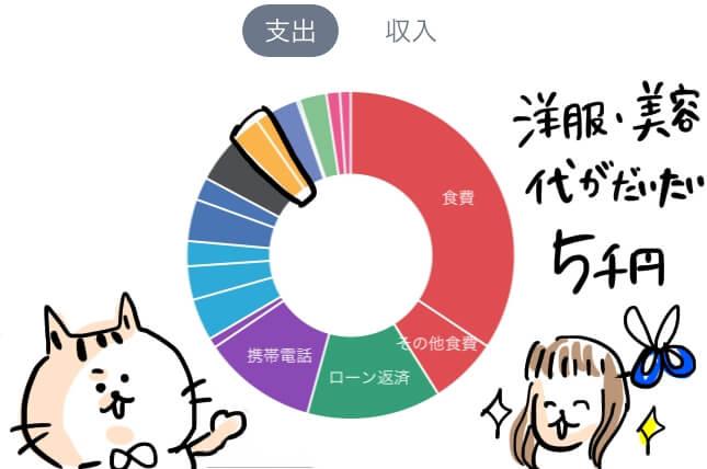 美容代 家計簿 円グラフ